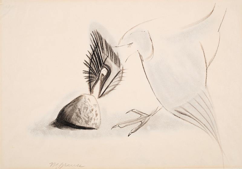 Graves, Bird Attacking a Stone